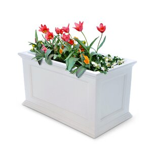 Box Self Watering Planters You Ll Love In 2021 Wayfair