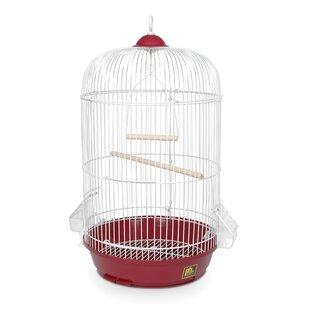 White Round Bird Cage Wayfair