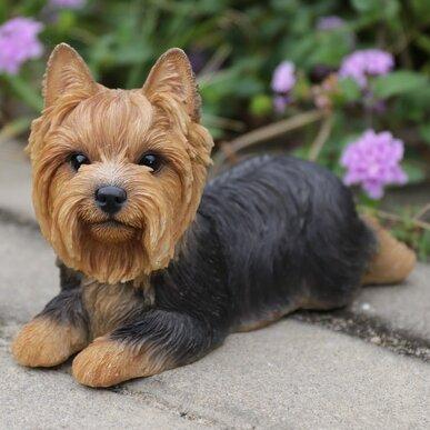Hi Line Gift Ltd Yorkshire Terrier Dog