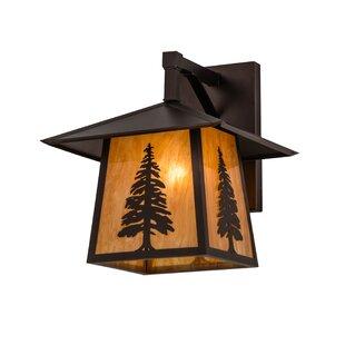 Compare Dunellen Pine Outdoor Wall Lantern By Loon Peak