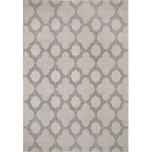 Parkins Light Gray/Silver Indoor/Outdoor Area Rug