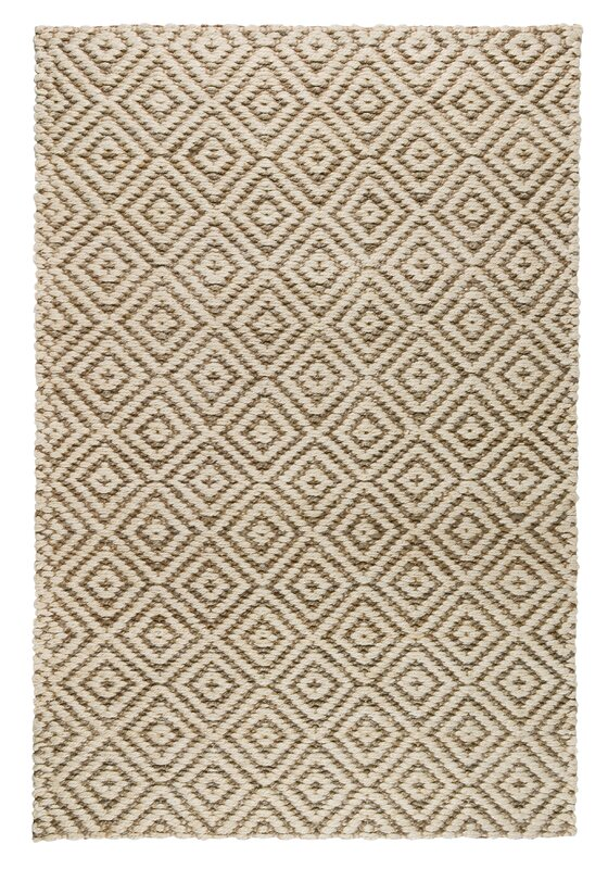 Dyann Hand-Woven Bleach/Gray Area Rug