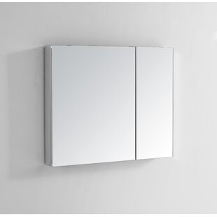 Reviews Aust 36 x 30 Recessed Frameless Medicine Cabinet with 3 Adjustable Shelves By Ebern Designs