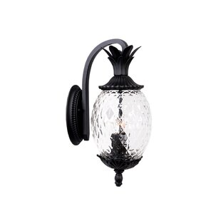 Kyra 2-Light Outdoor Sconce
