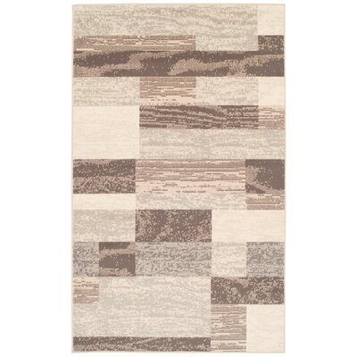 8 X 10 Brown Amp Tan Rectangular Rugs You Ll Love In 2020