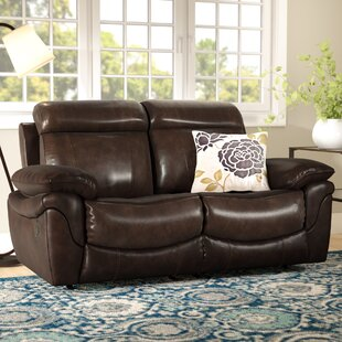 Winston Porter Caswell Leather Reclining Loveseat