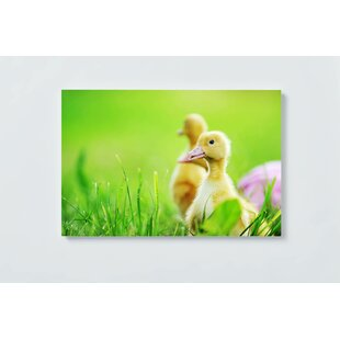 Chick Motif Magnetic Wall Mounted Cork Board By Ebern Designs