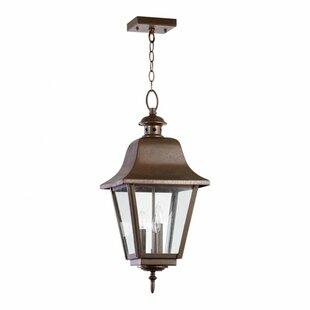 Irina 3-Light Outdoor Pendant by Alcott Hill