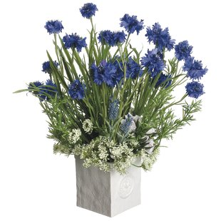 Avender/Mini Roses/Cornflower Mixed Floral Arrangement in Pot