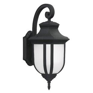 Fleur De Lis Living Teri 1-Light Outdoor Wall Lantern