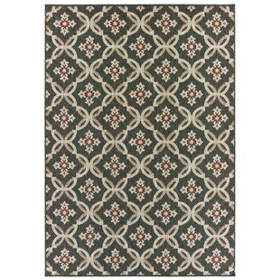Berryville Floral Trellis Gray/Orange Indoor/Outdoor Area Rug