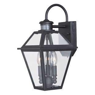 Darby Home Co Warlo 1-Light Outdoor Wall Lantern