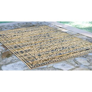 Deckard Damask Ivory Indoor/Outdoor Area Rug