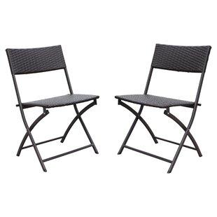 Ivy Bronx Maryanne Folding Resin Wicker Patio Chair (Set of 2)