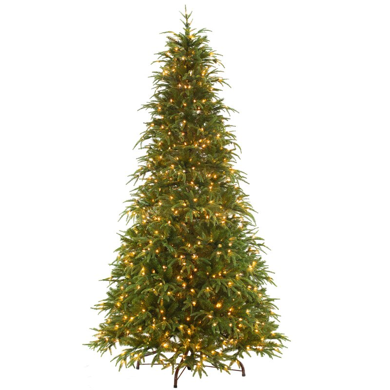 Christmas Tree With Colored And White Lights