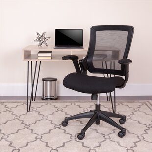 Hayse Mesh Task Chair by Symple Stuff #2