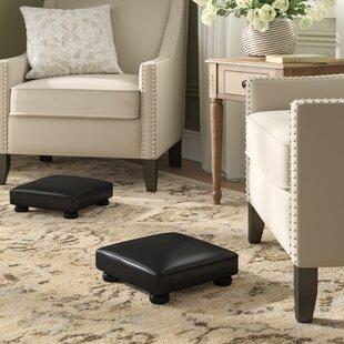 Admirable Rohrer Ottoman Set Of 2 Evergreenethics Interior Chair Design Evergreenethicsorg