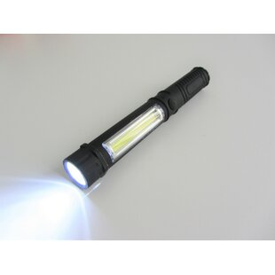 Parkes Battery Powered LED Outdoor Flashlight By Symple Stuff
