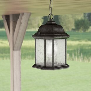 Burtt 1-Light Outdoor Hanging Lantern by Darby Home Co