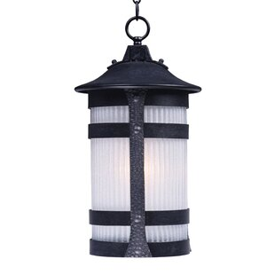 Latitude Run Jannie 1-Light Outdoor Hanging Lantern