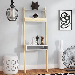 Langley Street Mateer Ladder Bookcase