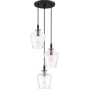 Noonday 3-Light Cluster Pendant by Brayden Studio