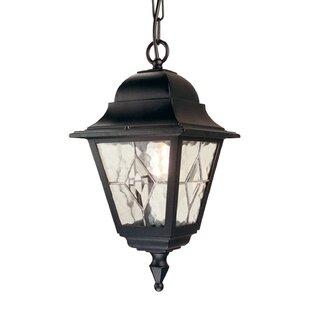 Verdigris 1 Light Outdoor Hanging Lantern By Sol 72 Outdoor