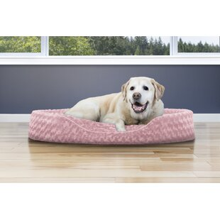 Oval Shaped Red Medium Dog Beds You Ll