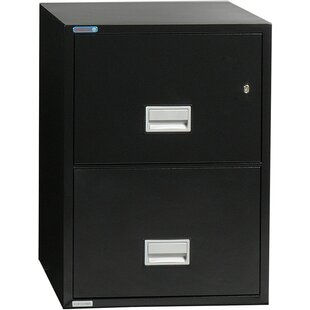 Online Reviews 2-Drawer Vertical Filing Cabinet by Phoenix Safe International