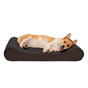 Bessiebarnie Ultra Plush Wild Lollipop Luxury Shag Dog Pet Mat Pad Wayfair