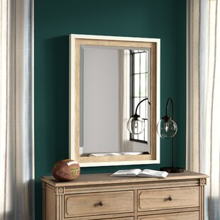Compare Appling 5 Drawer Dresser with Mirror by Greyleigh Reviews (2019) & Buyer's Guide