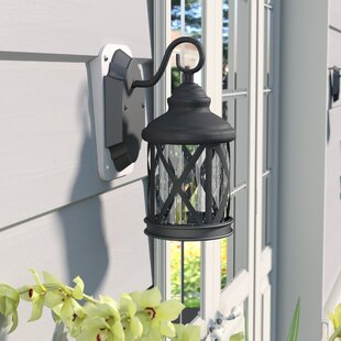 Carole 1-Light Outdoor Wall Lantern
