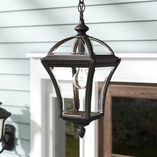 Tucker 1-Light Hanging Lantern