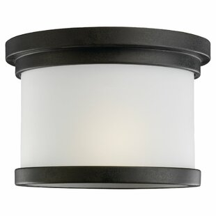 Dashiell 1-Light Outdoor Flush Mount