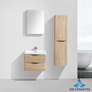 Manes 24 Wall Mounted Single Bathroom Vanity Set with Mirror