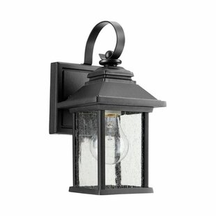Three Posts Hampstead 1-Light Clear Shade Outdoor Wall Lantern