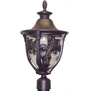 Phillipstown 3-Light Lantern Head By Alcott Hill Outdoor Lighting