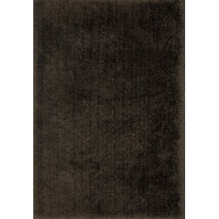 Hersi Hand-Tufted Chocolate Indoor/Outdoor Area Rug