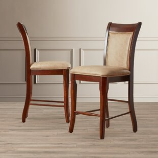 Swenson 24 Bar Stool (Set of 2)