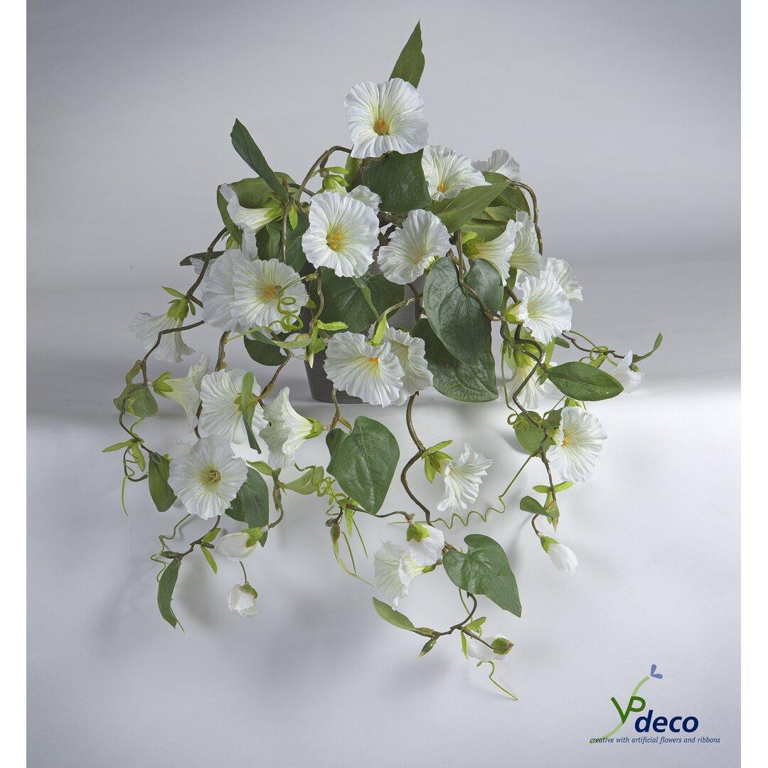47.5 Petunia Flowering Plant in Pot