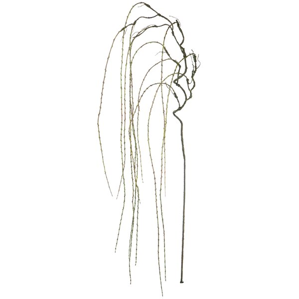 Pussy Willow Bundle of 3 Artificial Stems 15.75 Inches