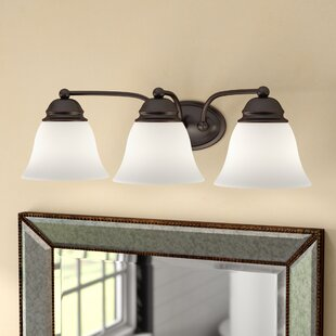 Best Reviews Poneto 3-Light Vanity Light By Charlton Home
