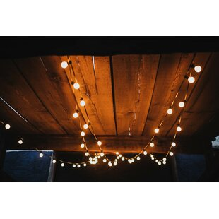 Hometown Evolution, Inc. 100-Light Globe String Lights