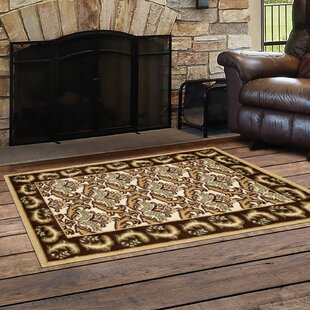 Northwest Hills Black/Brown Indoor/Outdoor Area Rug