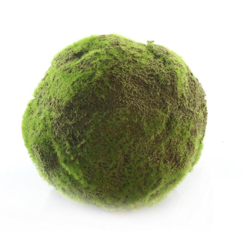 Decorative Moss Balls Best Gold Eagle USA Decorative Moss Ball Wayfair