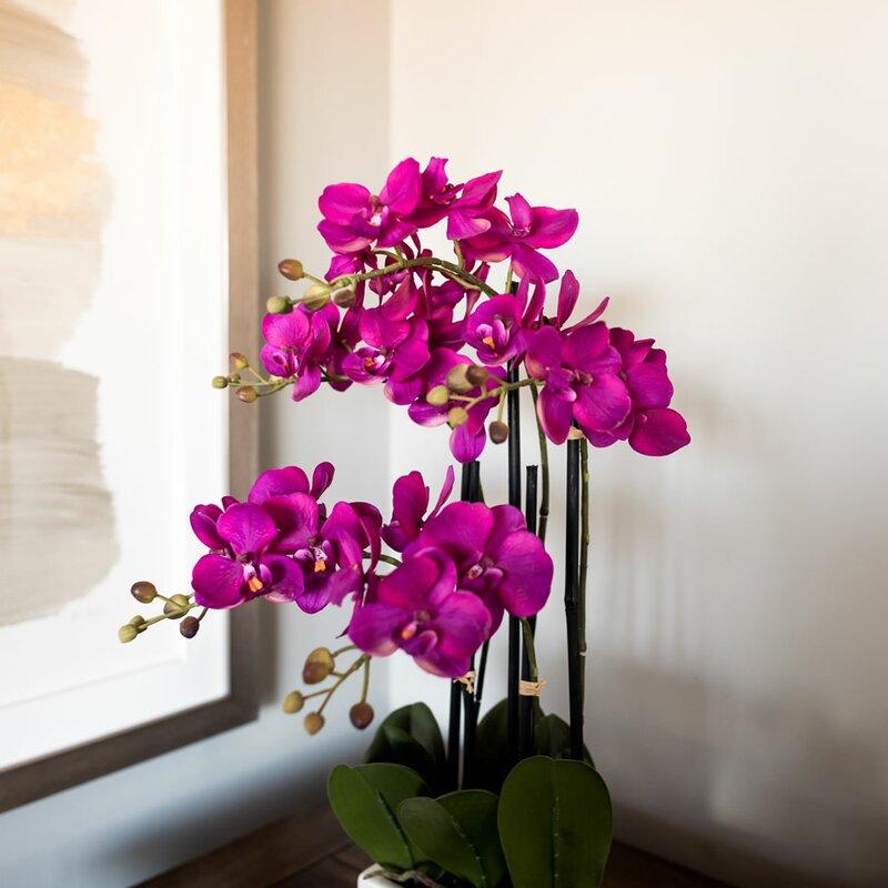Mercer41 Artificial Orchid Flowers In Vase Reviews Wayfair