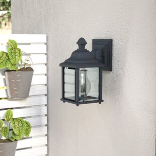 Talmadge 1-Light Glass Outdoor Wall Lantern
