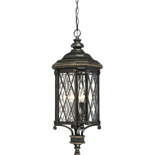Bargain Bayard 4-Light Outdoor Hanging Lantern By Astoria Grand