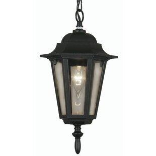 Pavillion 1 Light Outdoor Hanging Lantern By Sol 72 Outdoor