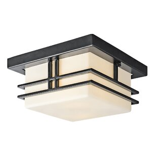 Latitude Run Modena 2-Light Flush Mount